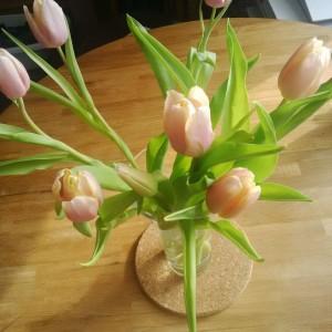 Die ersten Tulpen machen sich auf dem Tisch breit und sorgen für Frühlingsstimmung.
